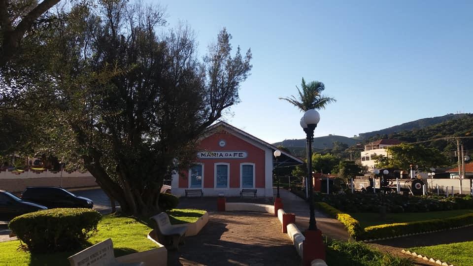 OLIVEIRAS E AZEITONAS EM MARIA DA FÉ, NA SERRA DA MANTIQUEIRA